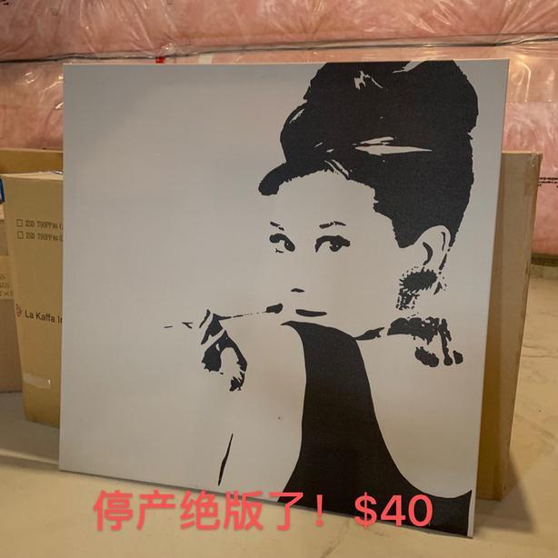 Audrey Hepburn handing picture