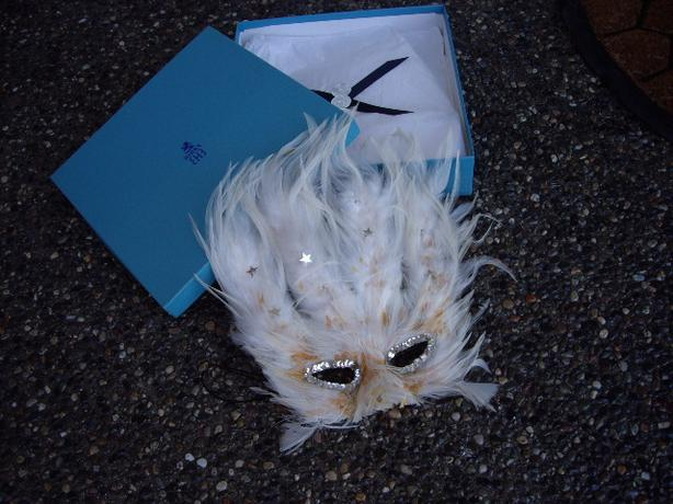 HALLOWEEN MASK OF FEATHERS IN BIRKS BOX