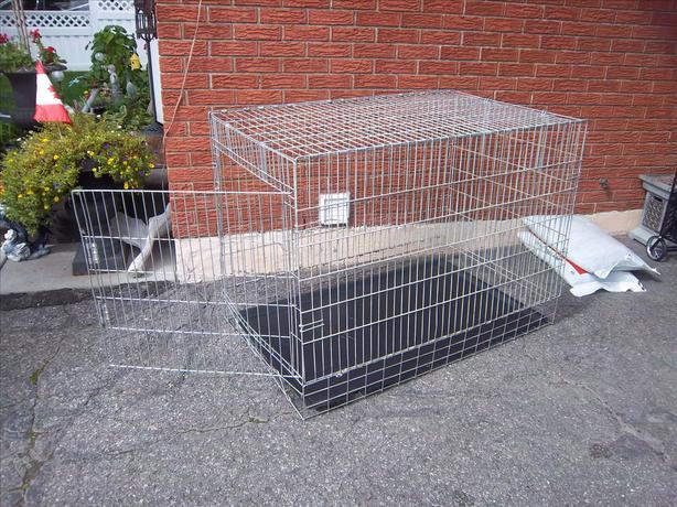 Large metal dog crate