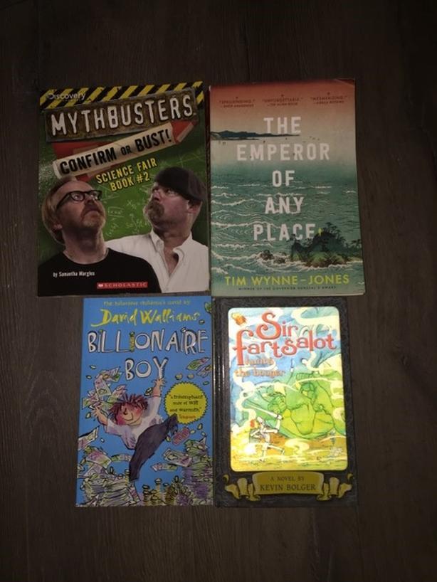 TEEN BOOKS / NOVELS