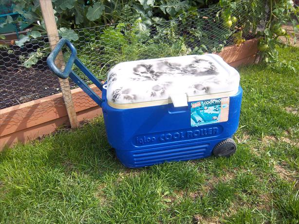 Igloo Cool-roller cooler