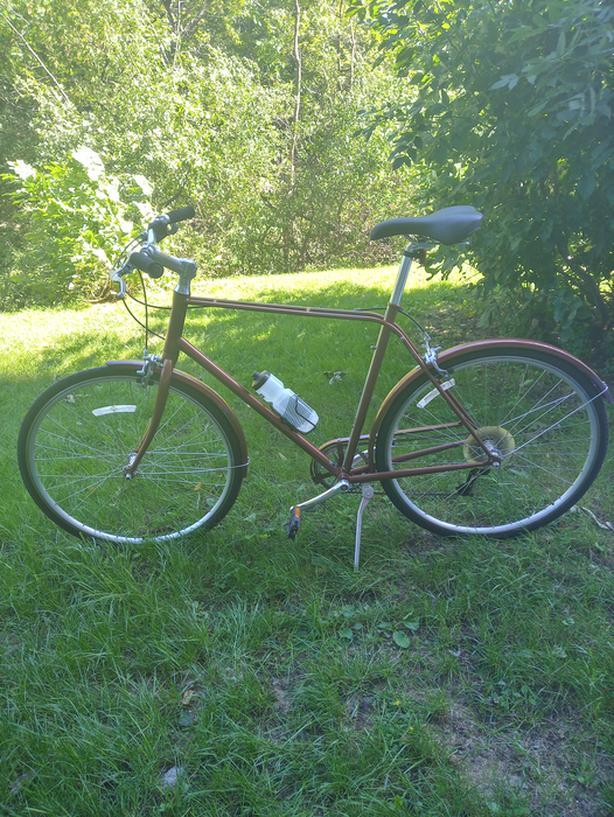 Adult Giant Via city bike