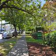 Large 760 square foot one bedroom/den suite in Marpole