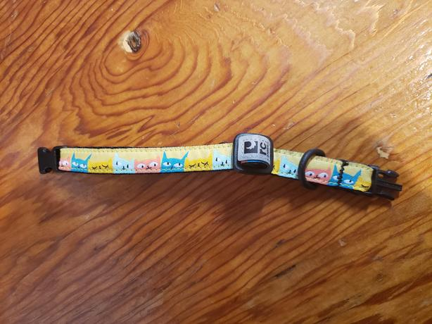 Pet collar - small size