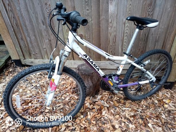 """asama 24"""" rim mtn bike"""
