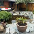 Nov Special book 2 nights get 3rd night free! 3 br Sooke Log House Retreat