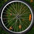 "24"" Wheel Set  $10 for both."