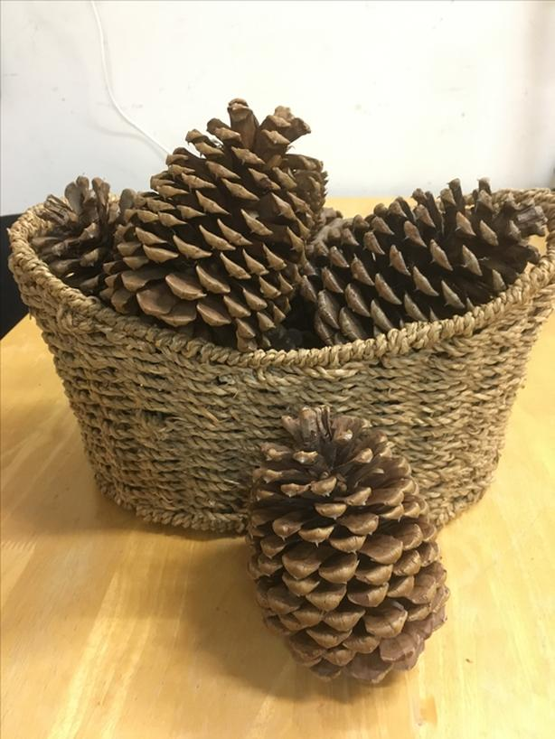 Giant pine cones and wicker basket perfect for Thanksgiving decor