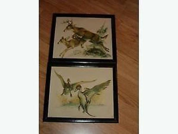 pictures 1971 plastic print -pictures wildlife ,