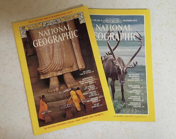 Lot of 47 NATIONAL GEOGRAPHIC MAGAZINES from 1976-80 and 92