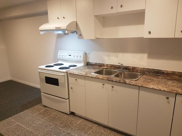 Newly renovated 3 bedroom basement suite minutes from University