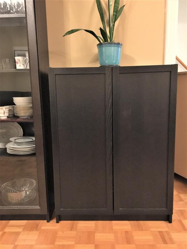Ikea storage cabinet/bookcase with doors.