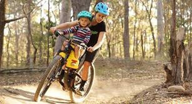 Feva kids bike seat