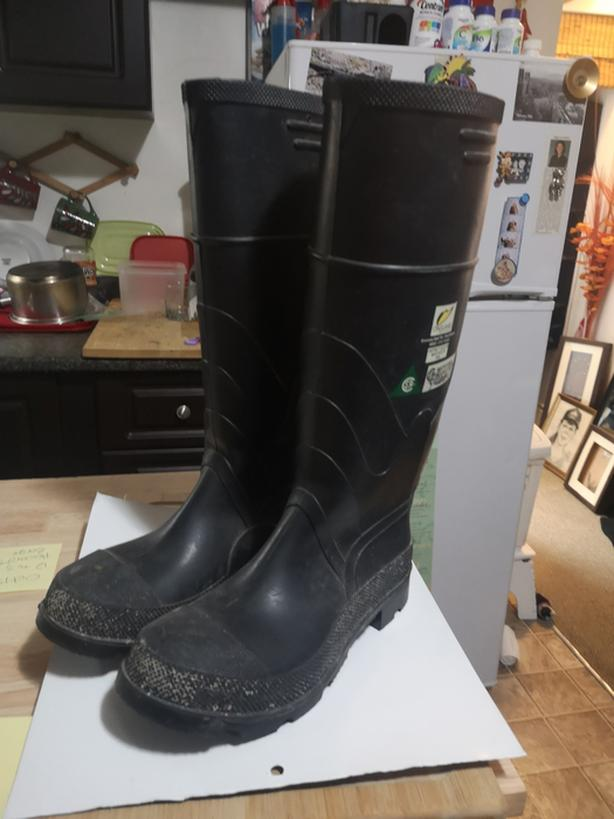 Steel toe Women's Gum boots size 6