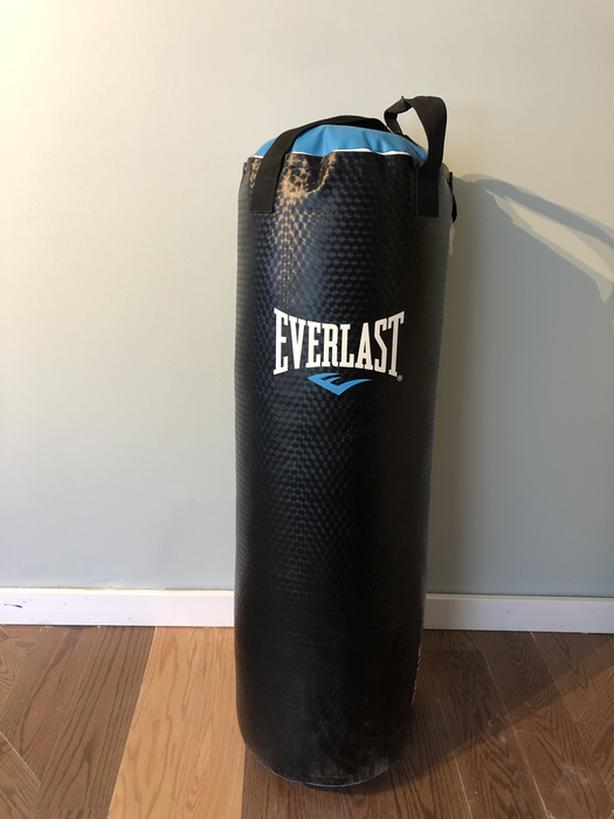 Everlast 100lb Punching Bag