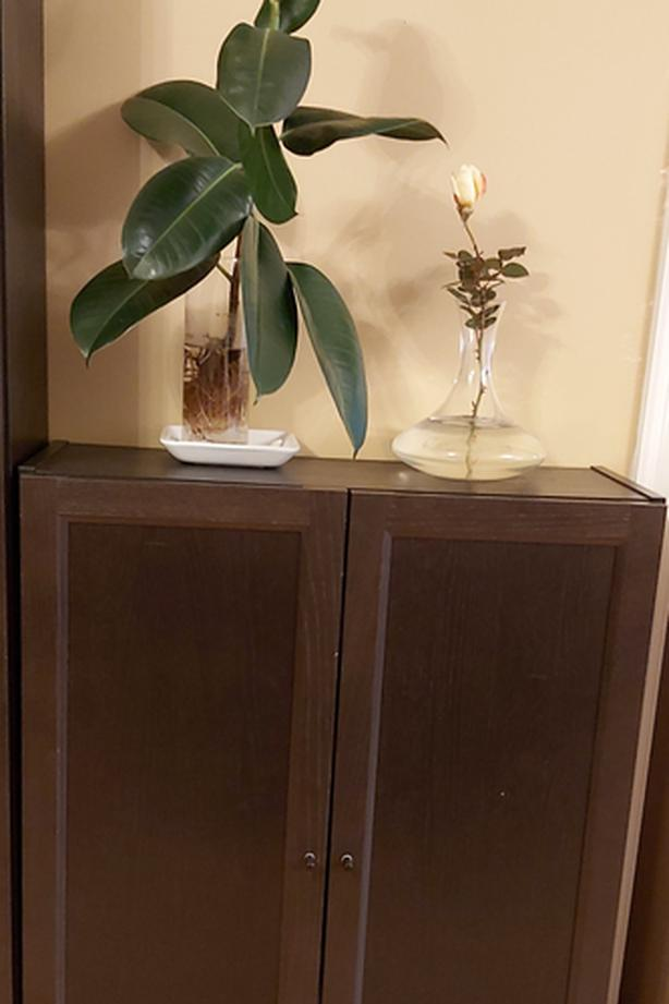 URGENT! Ikea storage cabinet /bookcase with doors (for home office)