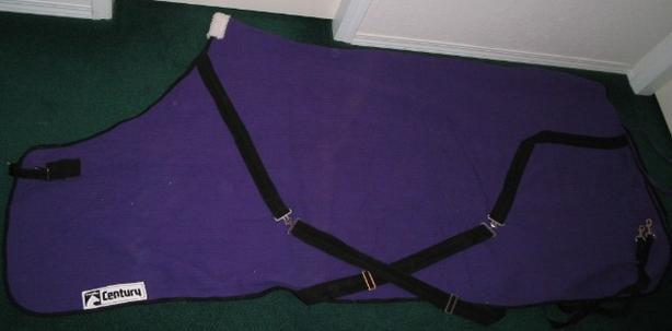 NEW Century Cavalier Purple 100% Cotton Sheet - Size 80