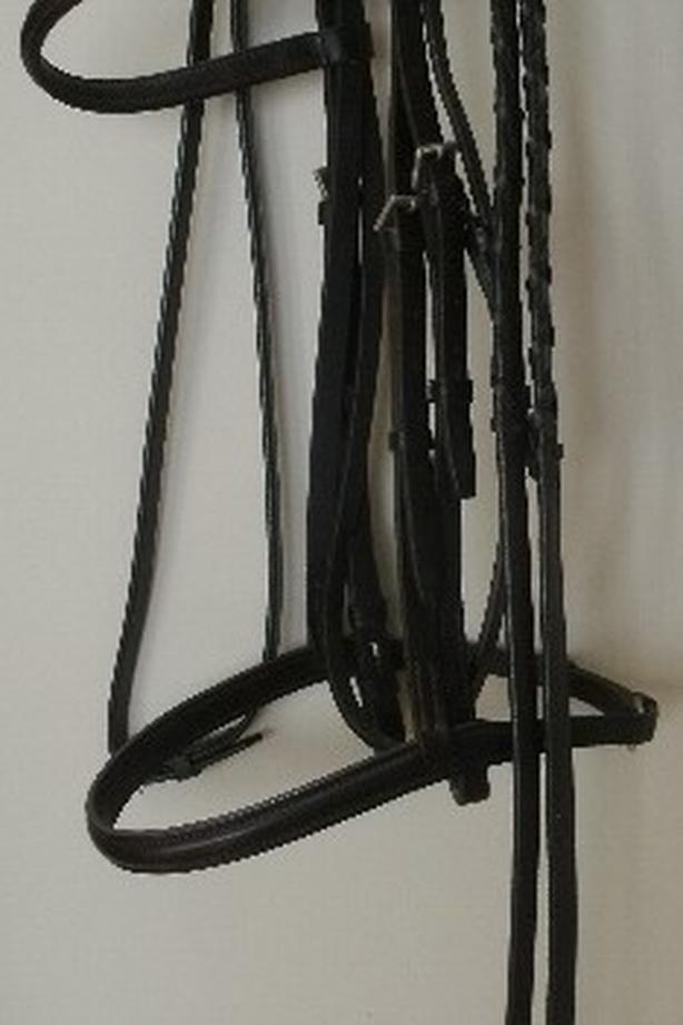 NEW Courbette Plain Raised Dark Brown Full Size Bridle with New Laced Reins $150