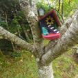 Whimsical birdhouse