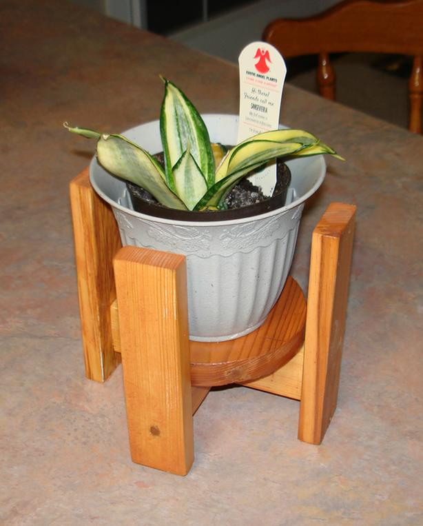 Wooden Plant Stand for 5 inch pot; plant not included