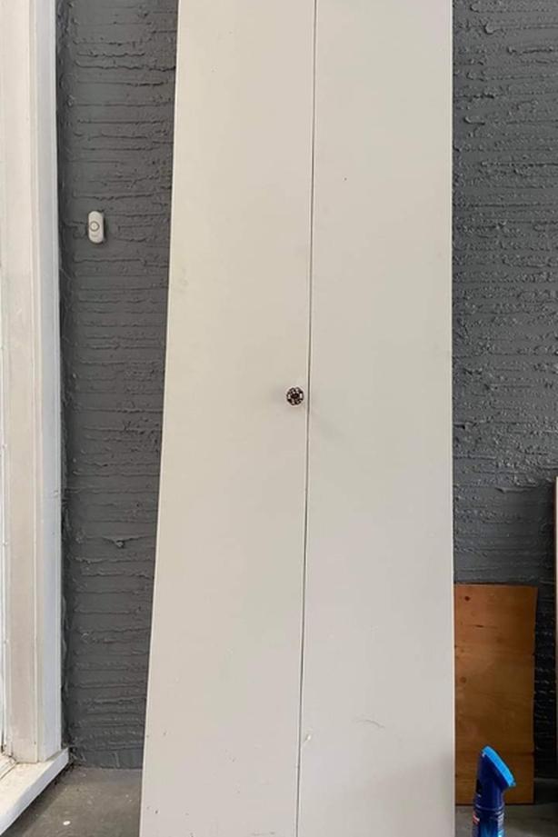 FREE: closet door