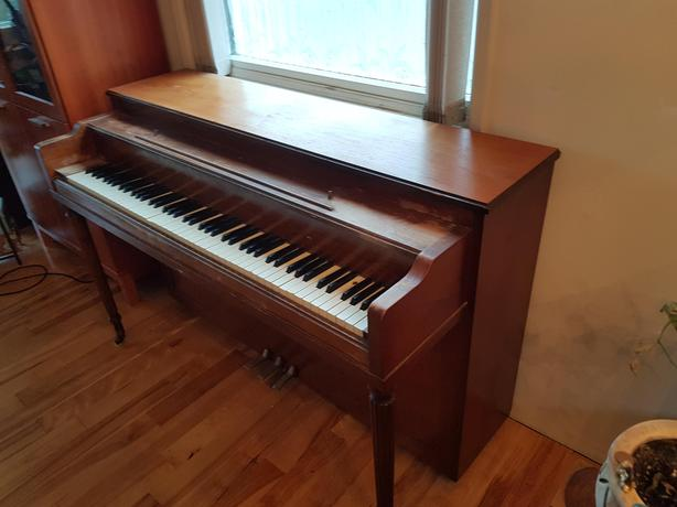 Kelly upright Piano