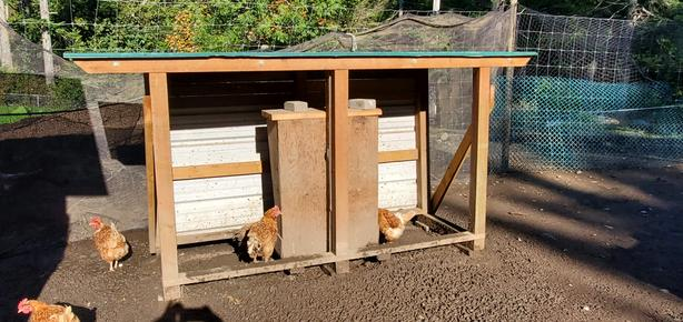 POULTRY FEEDING STATION