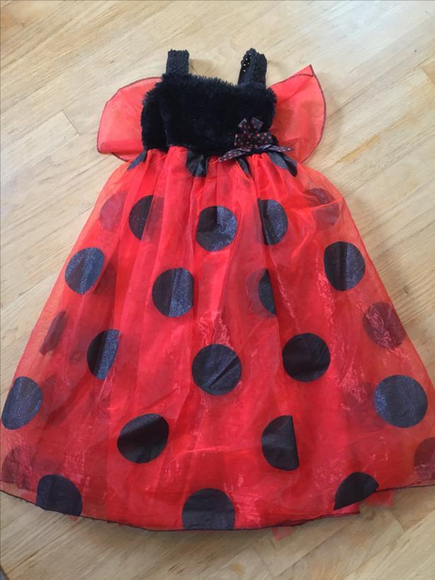 Ladybug costume 4T