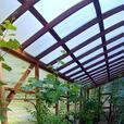 Greenhouse Plastic, Twinwall Polycarbonate Sheet in 4x8, 4x10, 4x12, 4x16