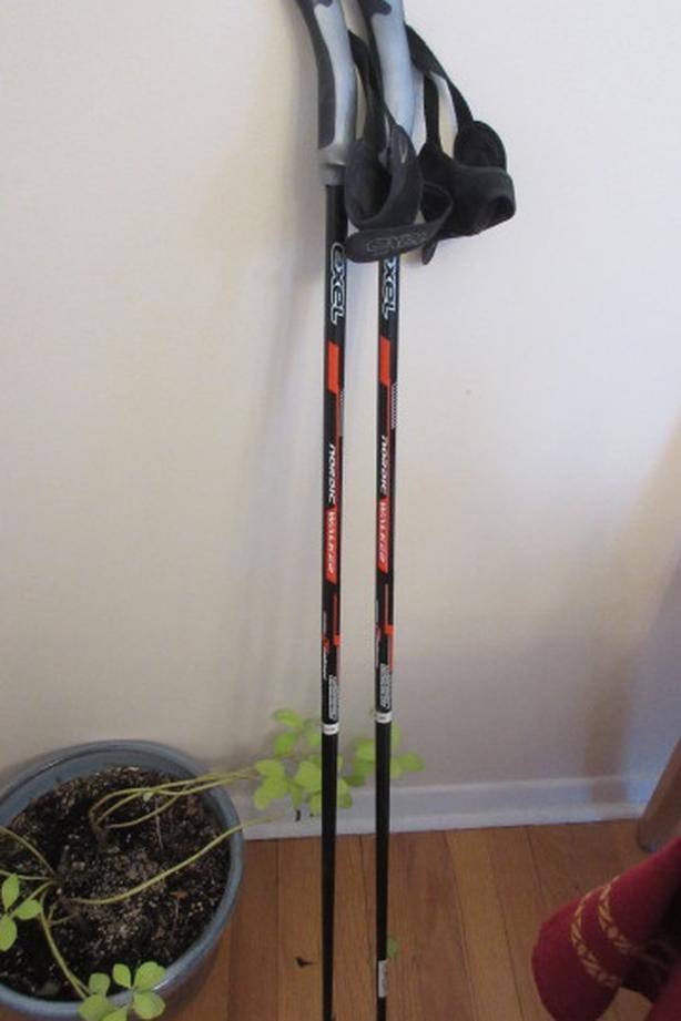 Exel 105cm nordic carbon fiber walker poles
