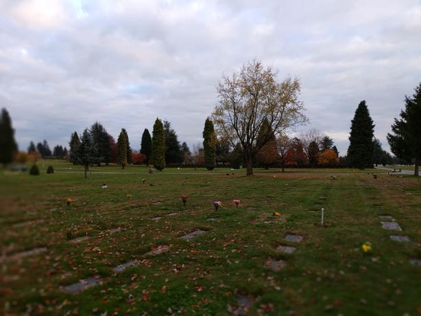 Private Sale: Ocean View Cemetery, Superior Section Lot 401 Grave 5 and 6