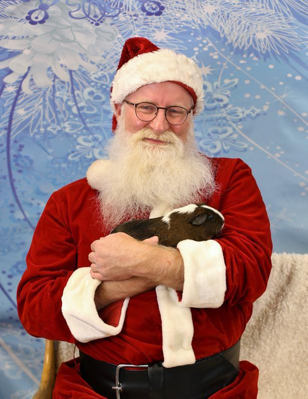 Pet Photos with Santa and Holiday Pet Portraits