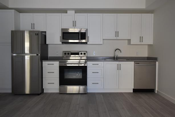 Brand New Pet Friendly Apartments in Sidney!