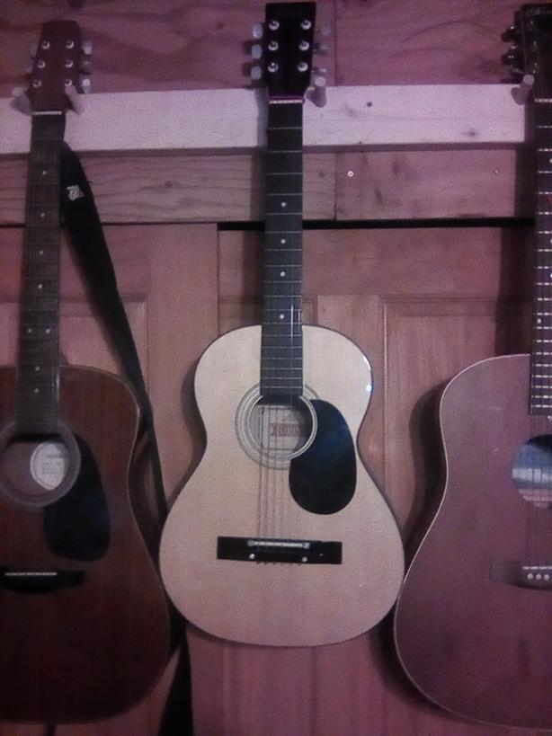 Torino guitar cheap