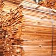 1 x 4 WRC Band Sawn Fencing