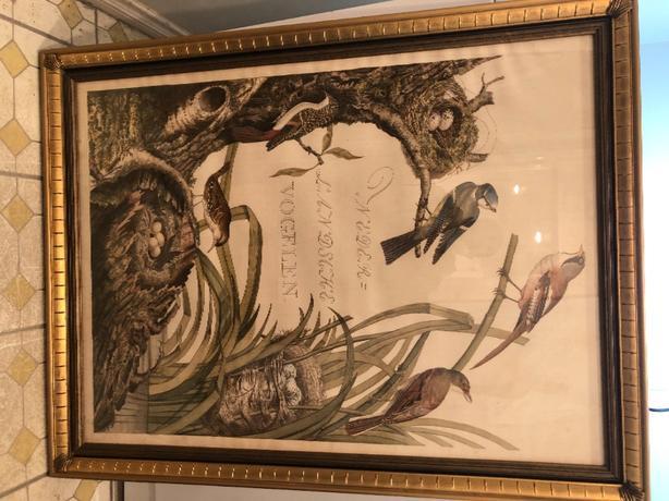 "Art - ""Sanctuary of Birds"""