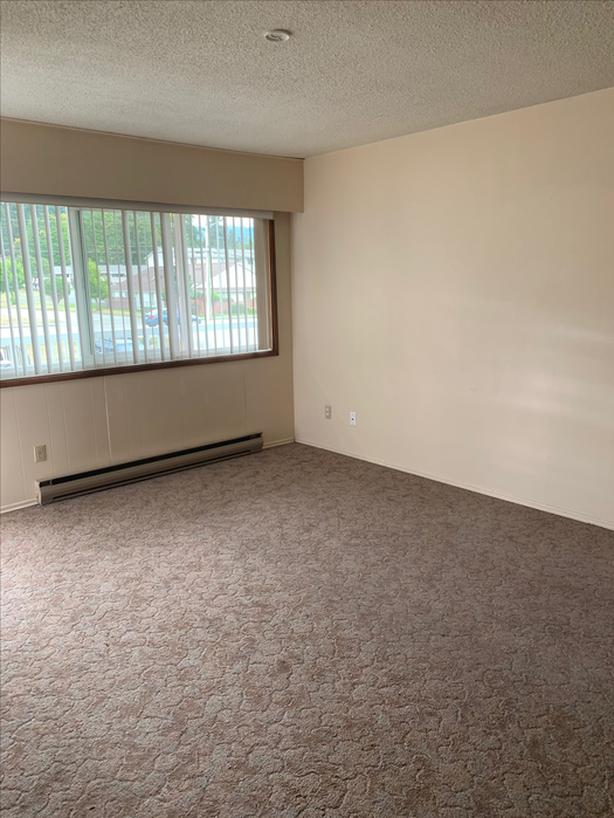 1 Bedroom Suite Available January 15th