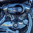 2018 Harley-Davidson XL1200C - Sportster 1200 Custom