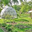 Geodesic Domes for Greenhouses and Glamping