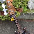 Jazz Style Kit Bass Guitar