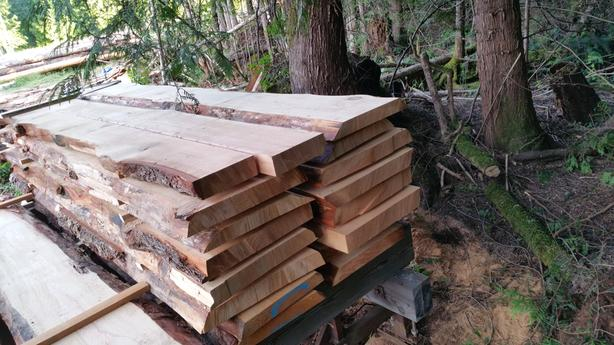 Old Growth Live Edge Fir Slabs