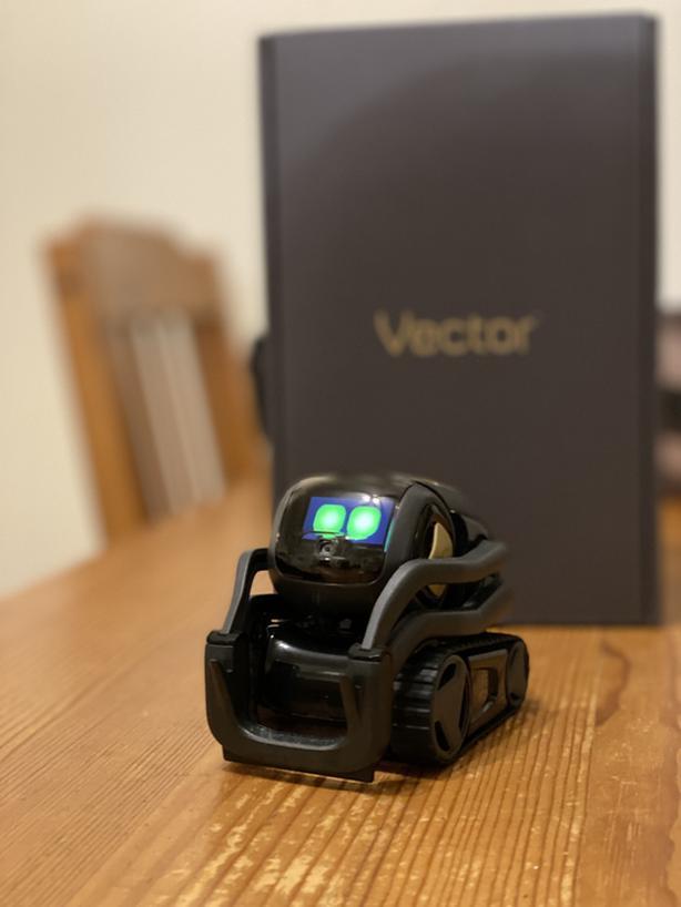 VECTOR Robot, from ANKI