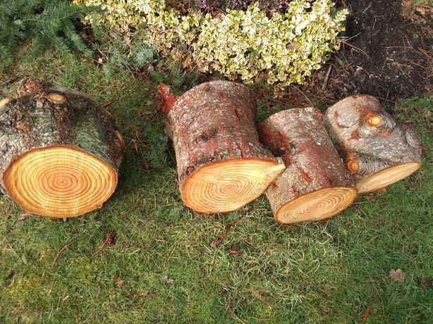 Fir firewood for sale
