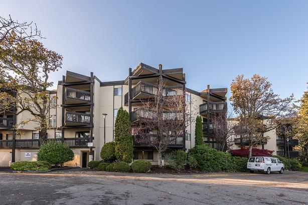 984 McKenzie Apartments - 1 Bedroom - Available April 1, 2021