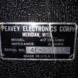 1974 Peavey column 8 ohm with new surrounds