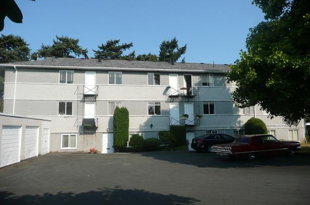 1669 Fairfield Road - Bachelor Suite in Fairfield