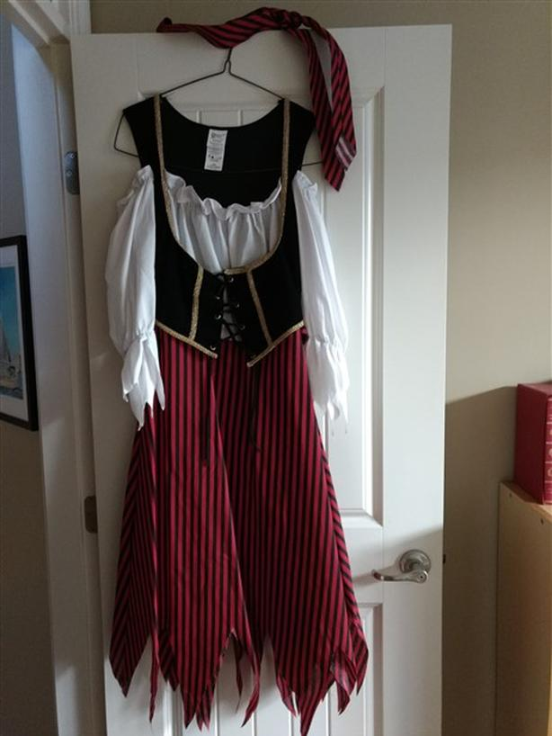 His and Hers Pirate costumes
