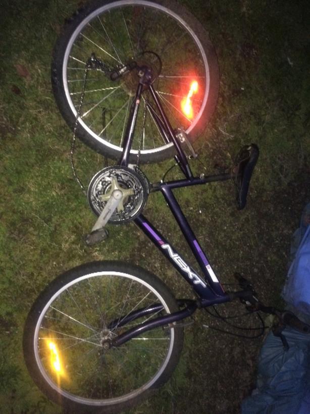 next youth mountain bike
