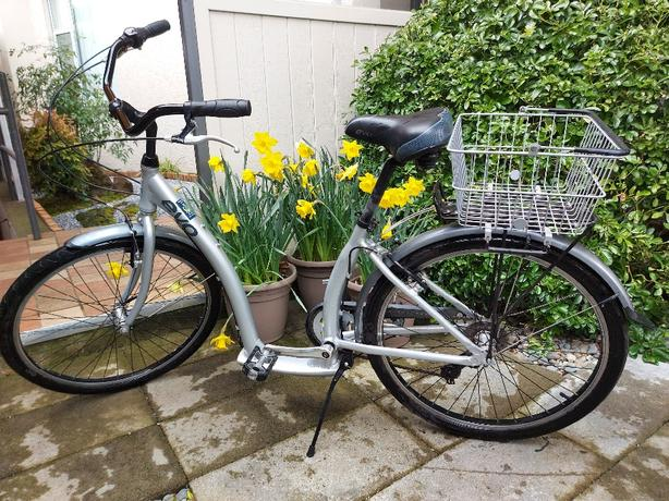 Ladies Evo Stepthrough bike