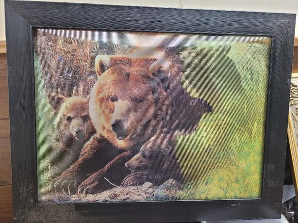 3D Grizzly picture